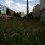 street art montreuil bricedu artiste atelier des epernons